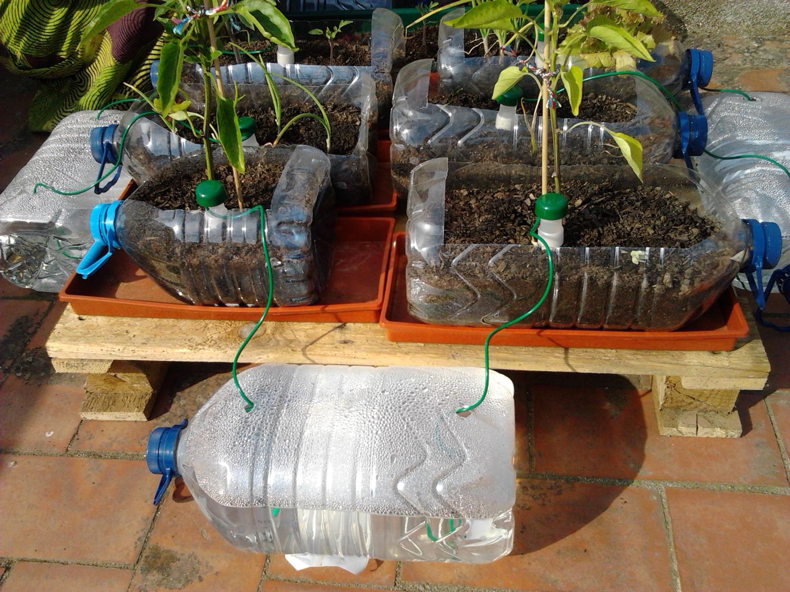 Riego autom tico de huerto urbano viviendomochiler s for Aspersores para riego de jardin