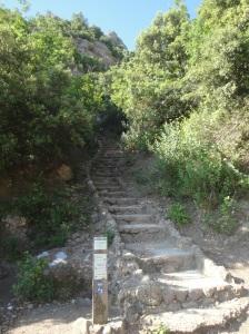 las escaleras al Monasterio, 25 minutos a paso rapido! :-P