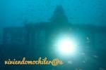 Dive 26 – Naranjito, Isla Gomera1946