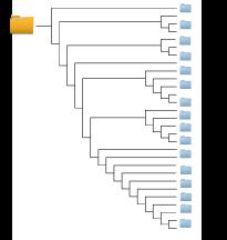 The_Ancestors_Tale_Mammals_cladogram